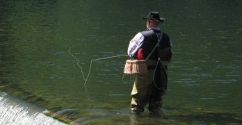 Northern Nevada fishing advisory