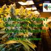 GCNV May 2017 Luncheon – Is Marijuana Green?